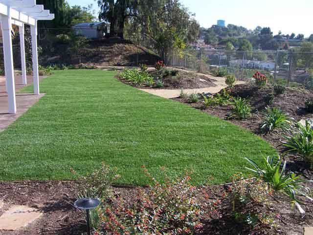 landscape contractor ... - Ario Landscape - Landscape Design Maintenance Tree Service San Diego